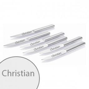 Set De 6 Couteaux Acier Inox